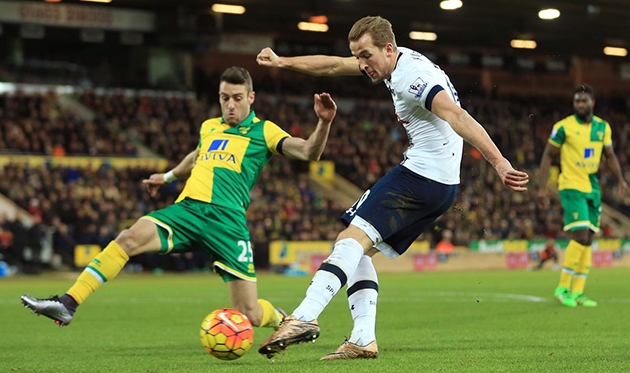 """Tottenham"" vs ""Norwich"": Will ""Tottenham"" start to win again?"
